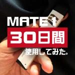 mate1